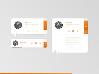 Music Player Concept lyrics sound musician widget uidesign design ui app player music app music player music