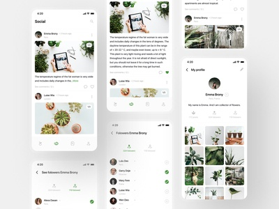 Plantstagram - Social network (IOS-mobile app) uxdesign uiux uxui uidesign social network social media design social plants plant mobile app minimalism instagram template instagram post instagram icon design grey flowers flower clean ui clean design