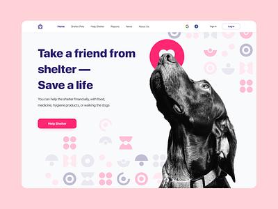 Shelter Pets animal cat dog pet shelter shelter pets vector illustration uiux ui art direction art dribbble design