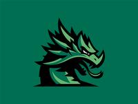 Cooper Dragons High School Logo