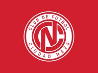 Club De Futbol Ciudad Neza