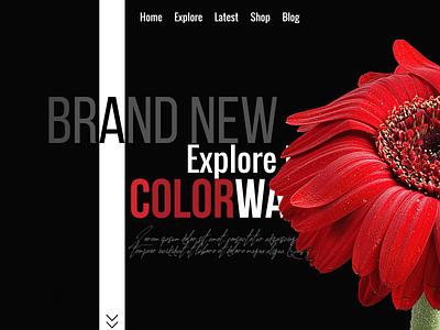 Website 43 webdesign branding website design website web ux ui illustration design