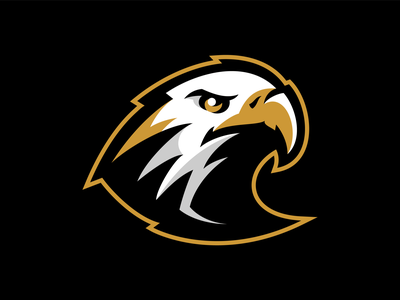 Boise Golden Eagles Men's Gymnastics prey feather eagle bird eagles boise university gymnastics team branding sport logo brand design vector matthew doyle mascot sports logo