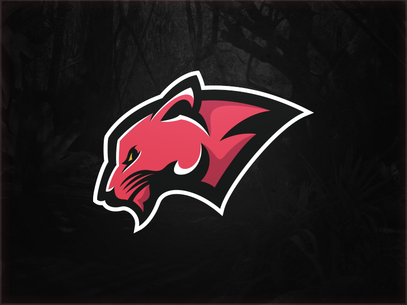 panther by matthew doyle on dribbble