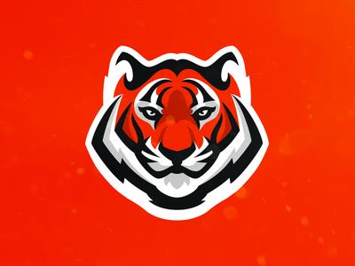 Tiger (For Sale)