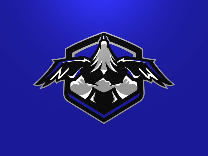 Denver Nightwings Secondary bird esports wings nightwings denver branding matt doyle team sport logo sport football animal brand design vector matthew doyle mascot sports logo