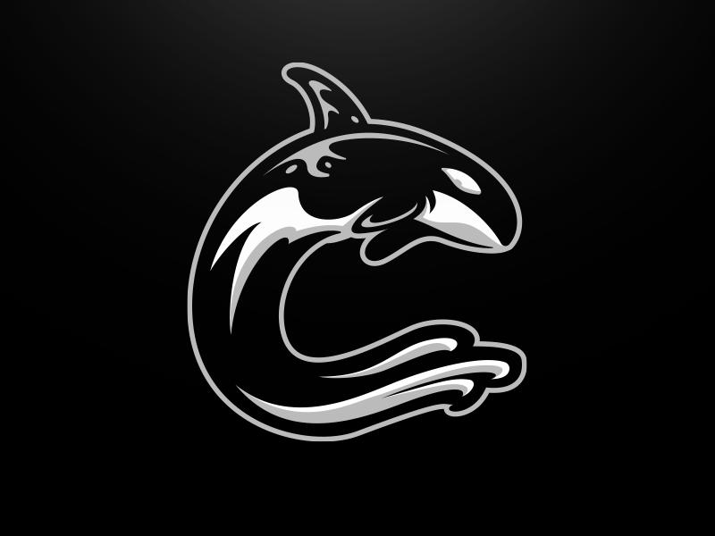 Charleston Predators Alternate wave predator water killer whale orca whale football brand mascot sports logo