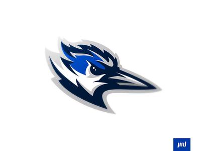 Jacksonville Kingfishers brand sport animal branding sport logo sports logo sports beak feathers birds matthewdoyle mascot logo mascot esports football bluejay bird kingfishers jacksonville logo