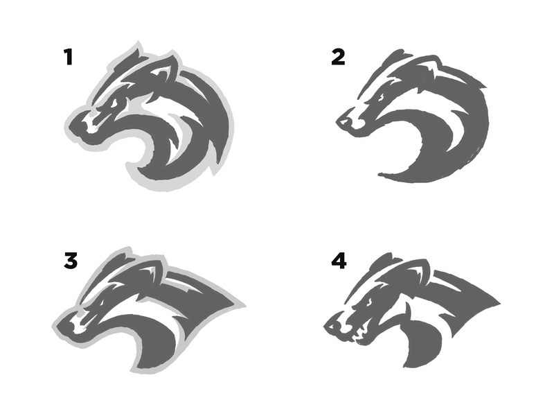 Badger Sketches ipad sketching logo sketch wip illustration branding sport logo mascot logo sports animals logo mascot logo sketch honey badger animal badgers