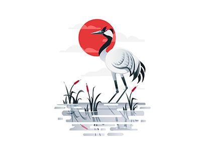 Crane Bird   flat colours designer illustration graphics reflection water white gray red bird crane