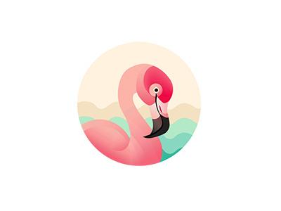 Flamingo   graphic design flamingo red pink graphic illustration logo bird