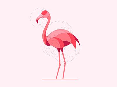 Flamingo  bird circle geometry grid design illustrator logodesigner designer graphic design illustration pink flamingo logo design animal mark