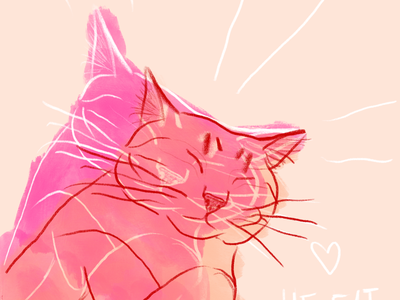 He Fat He Cat chonk paws sleeping animal procreate illustration cat