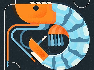 Shrimp illustration photoshop bleu sea shrimp