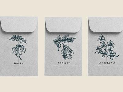 Custom Herb Seed Packets wedding favors plants minimal envelopes botanical illustrations