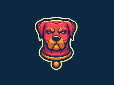 Rottweiler rottweiler mascot design mascot branding digital art illustrator illustration designer