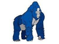 The 800 lbs gorilla in the room (Facebook)