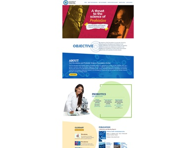 Gut Foundation ux ecommrce web design web design corporate design