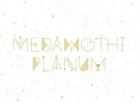 Medamothi Planum