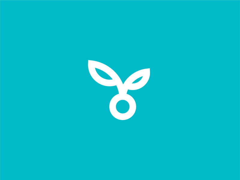 Bloom Creative development marketing content strategy digital innovation inspire branding create seed studio design bloom agency creative