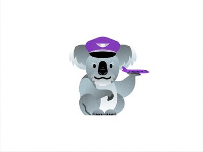 Koala at work