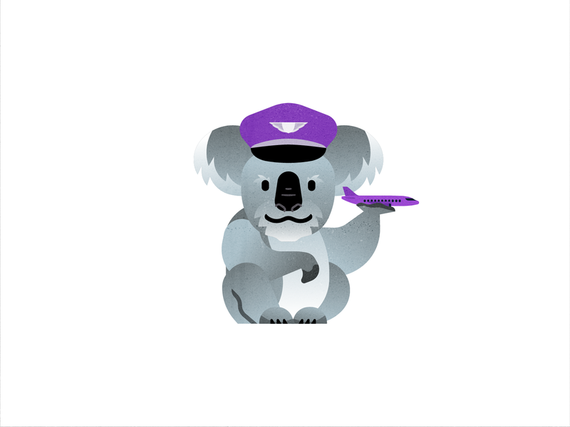 Koala at work search laptop illustration people vector business popular flat client travel office purple planning customer support service travel app fly traveling flight booking