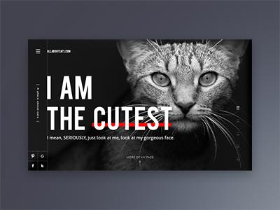 Yep. animal website landing page homepage cat white black