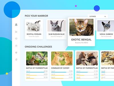 Cat Warrior icon dashboard progress bar filter interface uidesign ui blue cat card