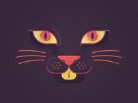 Kitty Dark