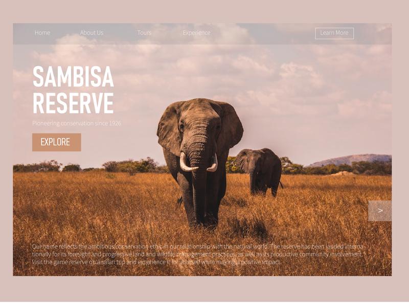 Sambisa Reserve ui landing page ux minimal illustrator illustration design branding