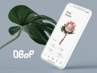 DBoP - Databank of Plants