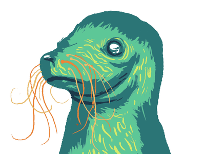 Expression of Seal creature drawing sketch life mammal ocean harbor illustration nature animal seal