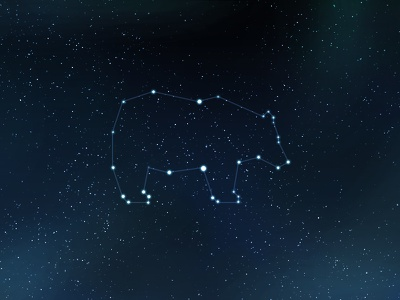 Launched! gridzzly launched bear space constellation star space art