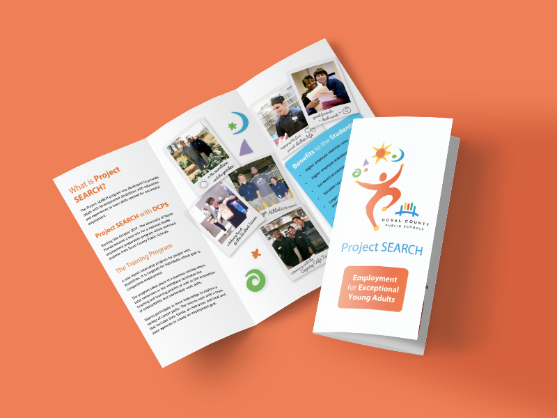 Project SEARCH Brochure exceptional special needs trifold job hunt project search brochure