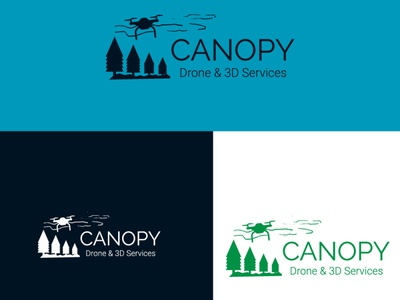 canopy drone 0 website logodesign branding type typography illustration flat minimal brand design