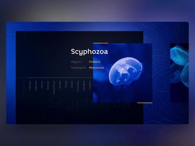 Jellyfish - PowerPoint Slides submarine sea ocean water design ui morph animation slide design slides powerpoint microsoft