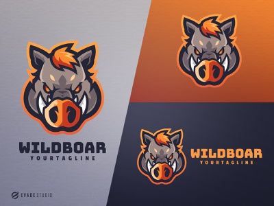 Wild Boar branding animal mascot logo design esports esportlogo pig head brand vector general company illustration esport mascot logo logoesport