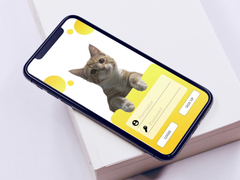 mockup cool ui design mockup cat