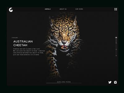 Animals ui webdesign website web ui web ux design illustration webdesign website design ui deibbble design webdesign ui