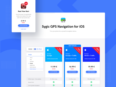Sygic Pricing packages license lifetime price plan price uiux pricing