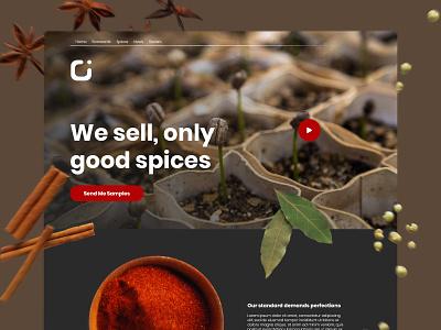Spices Export Website ui website illustration web ui  ux minimal design floating spices landing page landing video brown