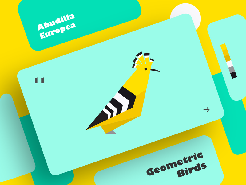Abudilla Europea | Geometric Birds ux ui typography shot shadow illustrator illustration graphic design geometry flat effect dribbble design creative colors clean bird art
