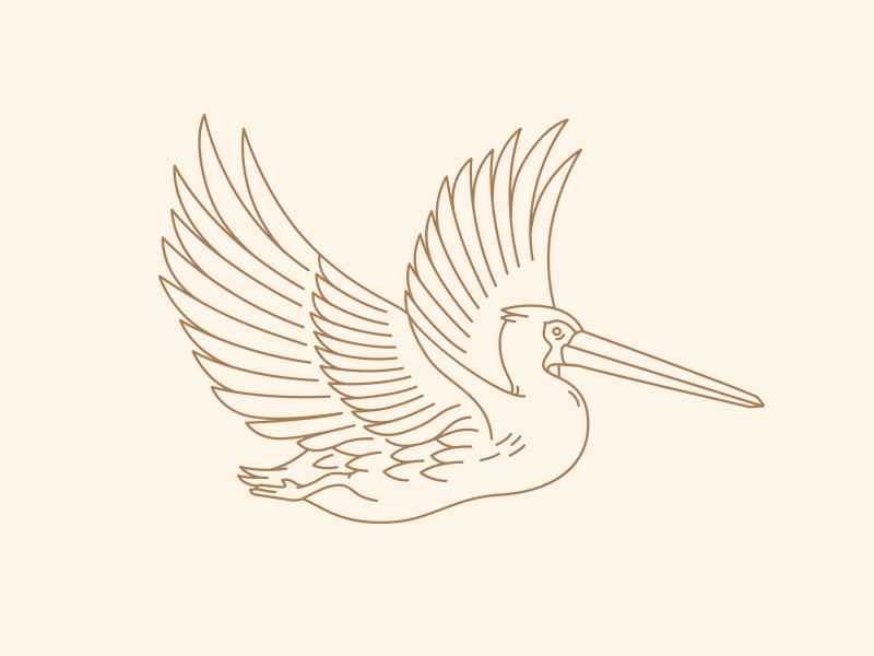 Pelican option 3  label beer sun orange bird pelican packaging flat florida branding