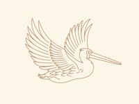 Pelican option 3
