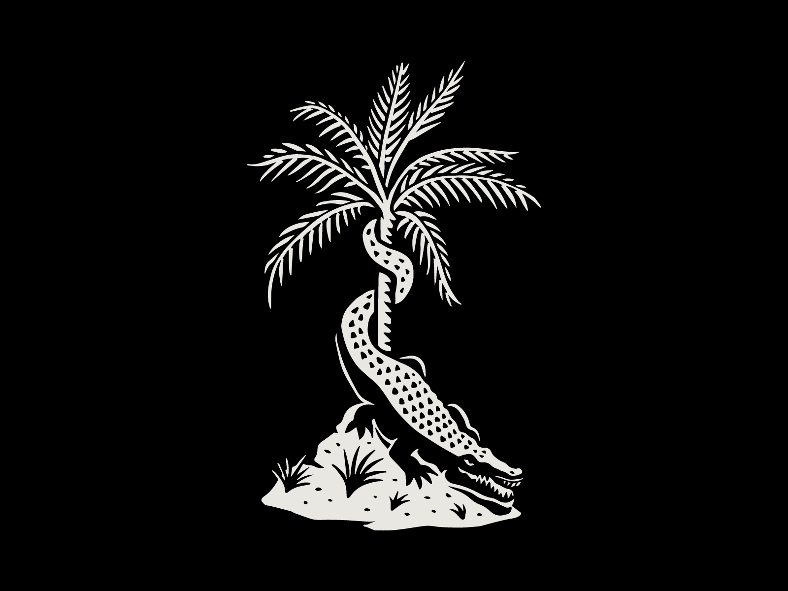 Dribbble Royal Palm 08 Png By Kenny Coil