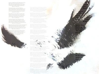 Bird Two graphic design typography photography