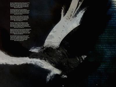 Bird Five graphic design typography photography