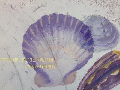 Shells graphic design typography photography illustration