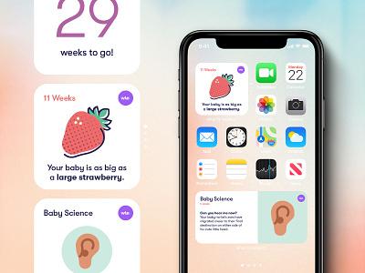 What to Expect iOS14 Widget birthday homescreen ios pregnant apple widget ios14 baby birth dribbbleweeklywarmup