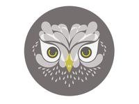 Owl Logo Concept 3